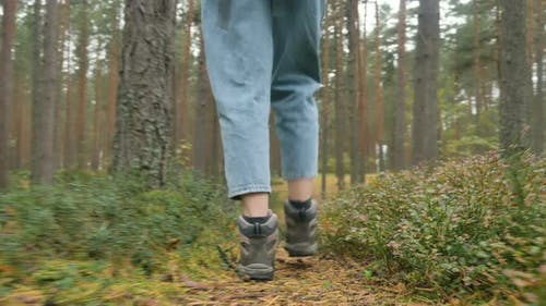 Woman in Boots and Jeans Walks Along Road in Autumn Forest