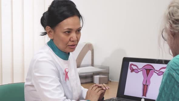 Thumbnail for Female Gynecologist Talking To Her Patient Showing Uterus Picture on the Laptop