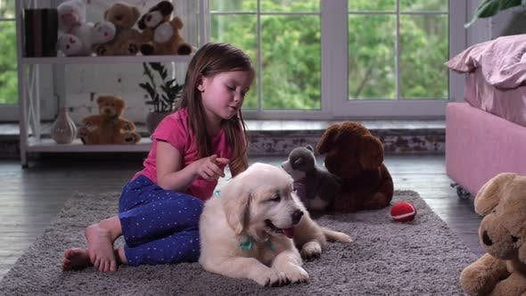 Thumbnail for Cute Girl Playing with Puppy Sitting on Floor