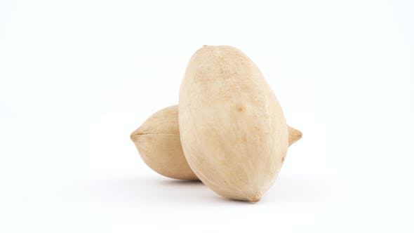 Thumbnail for Two Pecan Nuts in a Shell. Rotating on the Turntable Isolated on the White Background