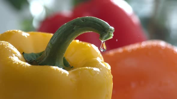 Thumbnail for Water drips on bell peppers in slow motion; shot on Phantom Flex 4K at 1000 fps