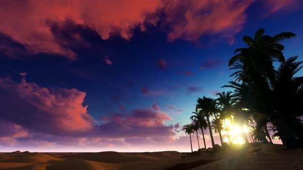 In The Desert 01 HD