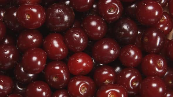 Thumbnail for Cherry Berries Are Rotating