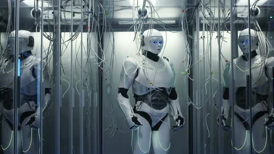 Cover Image for Humanoid Robot Checking Servers in a Data Center