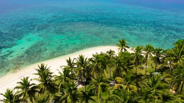 Thumbnail for Beautiful Beach. View of Nice Tropical Beach with Palms Around. Holiday and Vacation Concept