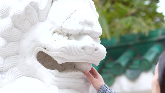 Thumbnail for Lion statue in chinese garden