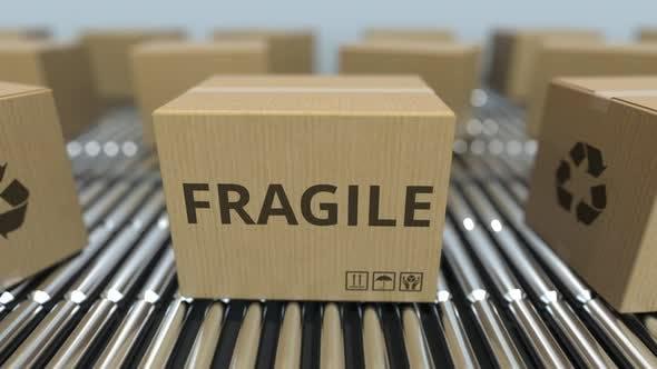 Thumbnail for Carton Boxes with FRAGILE Text Move on Roller Conveyor