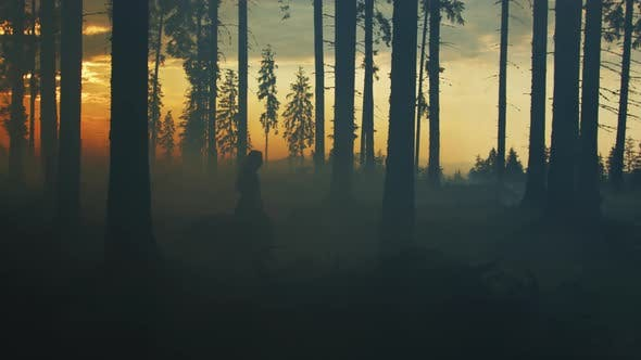 Thumbnail for Girl running with a dog in a forest, at sunset