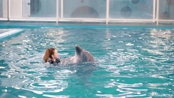 The girl swims with a trained dolphin in the pool