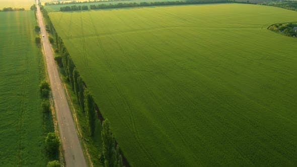 Thumbnail for Aerial View Of Green Fields