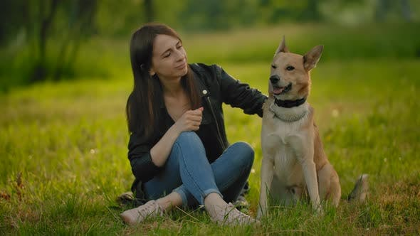 Thumbnail for Female, Sitting on the Groung in Park, Stroking Her Dog.