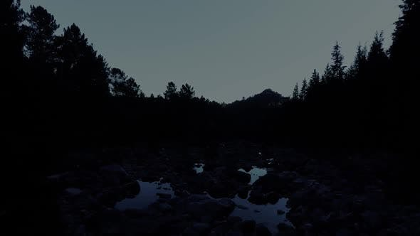 Thumbnail for Forest River at Night