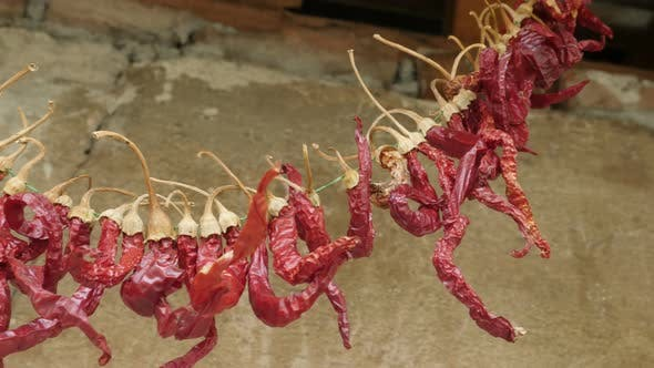 Thumbnail for Drying of chili peppers by hanging them on string
