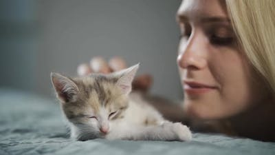 The Pet Owner Kisses and Strokes a Little Sleepy Kitten Lying on the Bed