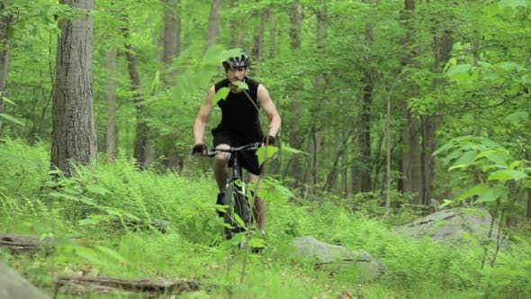 Thumbnail for Male cyclist riding through forest