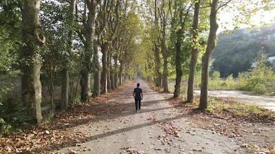 Walking Road Autumn