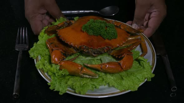Thumbnail for Two Hands Placing a Crab Dish
