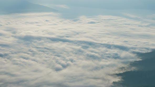 Fog Over Forest
