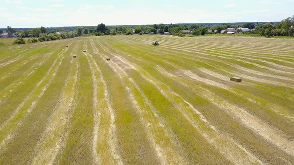Thumbnail for Tractor Discharges a Fresh Wheat