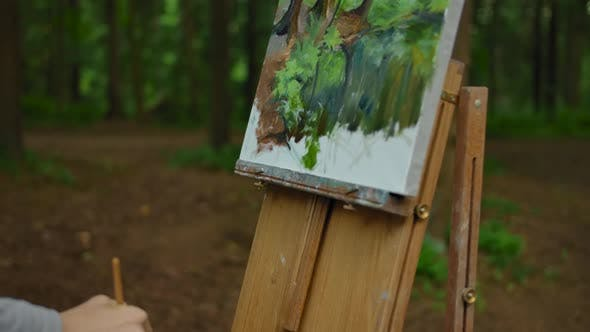 Thumbnail for Young Girl's Hand Making a Few Strokes on the Landscape Drawings in the Forest