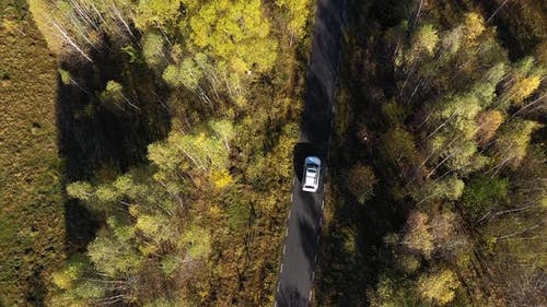 Flying Above a White Car Driving on Colorful Autumn Forest Road. Aerial Drone Point of View
