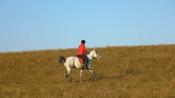 Thumbnail for Girl Riding a Horse Galloping Across the Field. Slow Motion