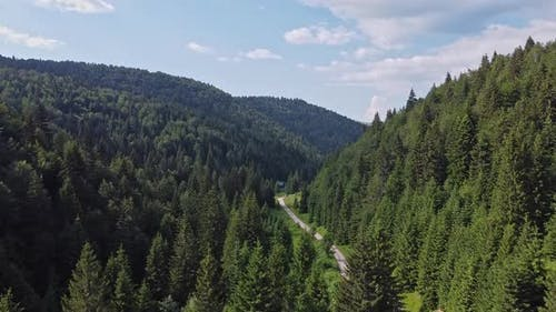 Aerial Forest and Mountain Footage V6