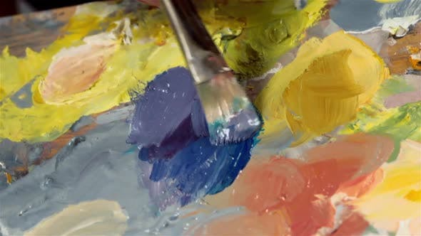 Thumbnail for Palette With Oil Paints