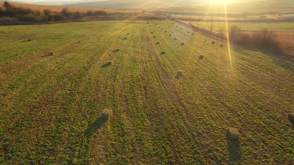 Thumbnail for Flying Over Agricultural Field With Hay Bales