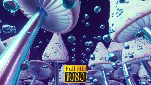 Mushroom Fantasy HD