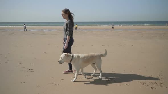Thumbnail for Slow Motion Shot of Young Woman Strolling with Labrador on Beach