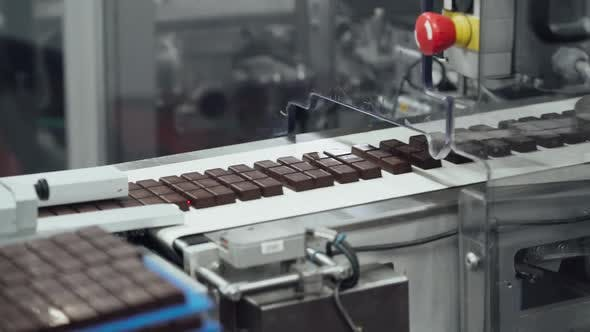 Chocolate Factory, Production of Sweets and Desserts, View of Chocolates Transported on Conveyor
