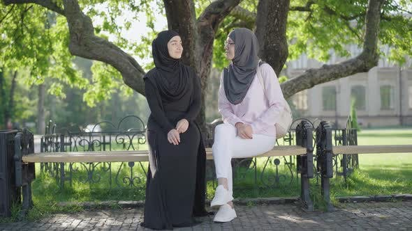 Thumbnail for Wide Shot of Intelligent Muslim Women Chatting at College Yard on Sunny Day. Portrait of Confident