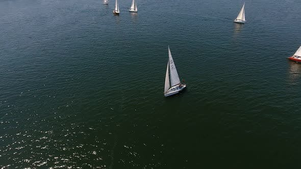 Thumbnail for Aerial Shot of Beautiful Yachts Sailing in the Dnipro River on a Sunny Day