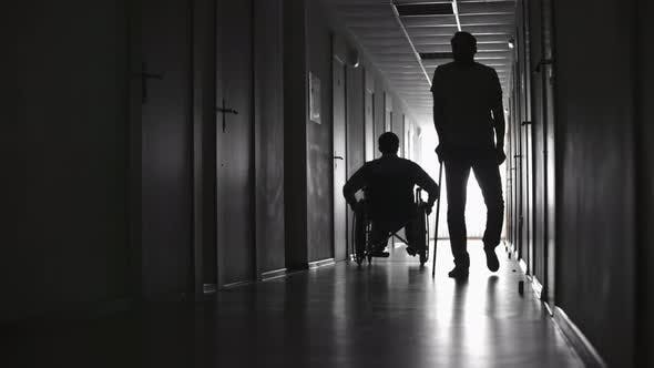 Cover Image for Silhouettes of Patients in Hospital Hallway