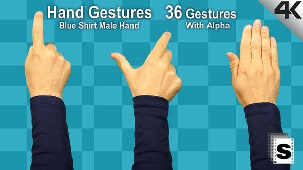 Thumbnail for Hand Gestures Male Blue Shirt