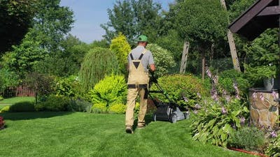 Seasonal Lawn Care And Maintenance.