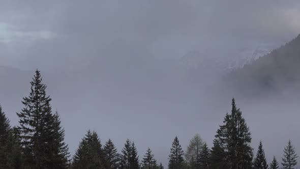 Thumbnail for Mountain Alps Landscape with Trees in Fog Clouds