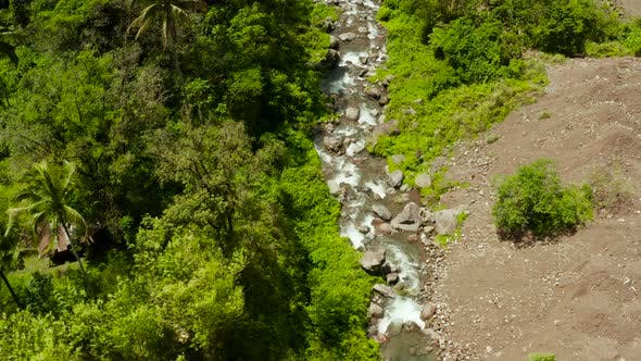River Flowing in the Mountain Jungle, Philippines, Camiguin.