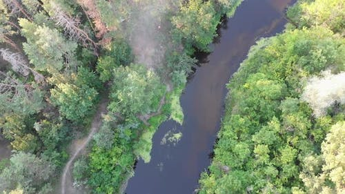Aerial View of Riverbed Between Pine Forest. River Near Tops of Green Trees