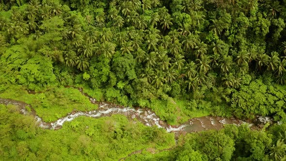 Thumbnail for River Flowing in the Mountain Jungle, Philippines, Camiguin