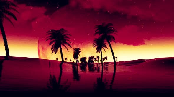 Thumbnail for Flying Past Silhouette Palm Tree to Red Sun 4K