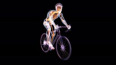 Xray cyclist