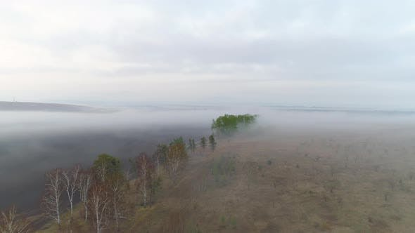 Aerial View On Spring Landscape In Fog