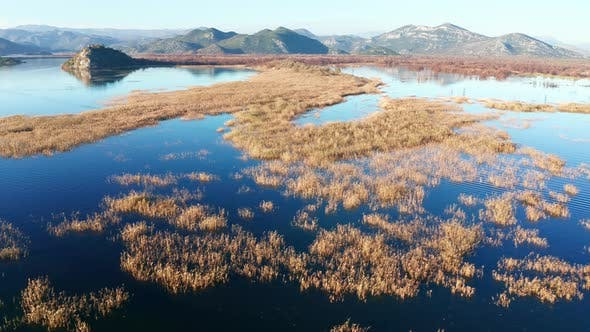 Yellow grass in the blue water of a marsh, surrounded by hills and mountain peaks. Lake Skadar