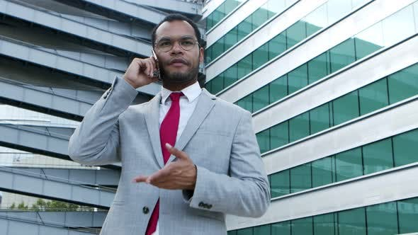 Professional Businessman Talking By Smartphone