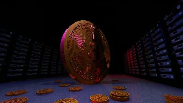 3D Bitcoin Gold and Data Server Generic
