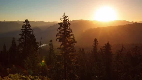 Thumbnail for Beautiful Sunrise Over A Scenic Forest