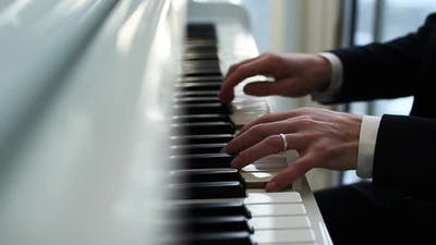 Pianist Plays the Piano Fingers Run Over the Keys Musician Plays the Melody