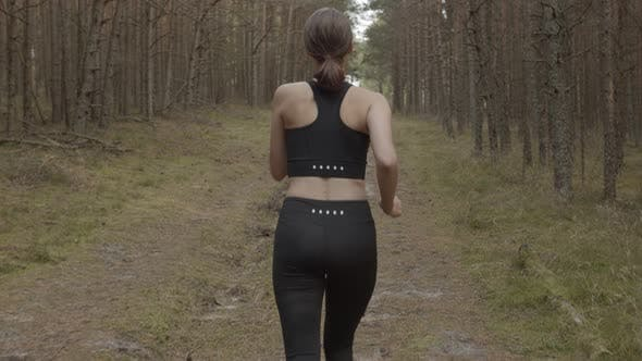 An Athlete Running Along a Forest Trail